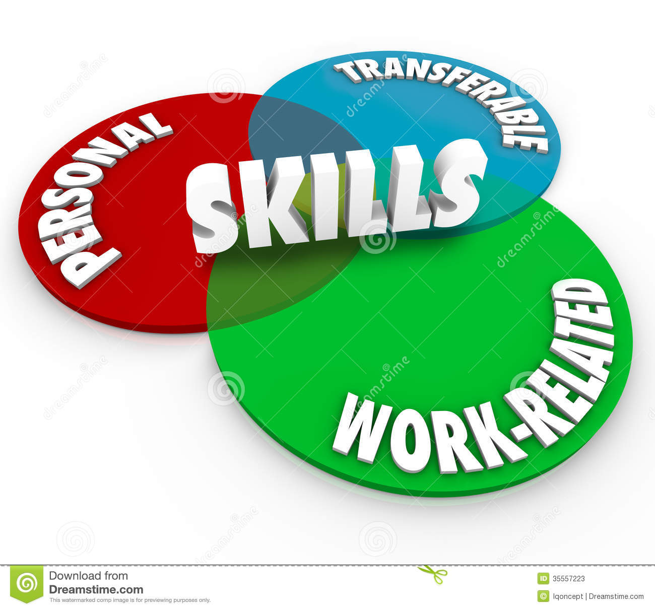 skills venn diagram personal transferable work related stock illustration