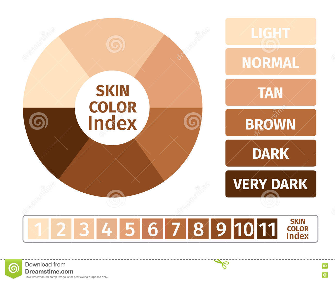 Skin color index infographic 3 chart of skin stock illustration skin color index infographic 3 chart of skin nvjuhfo Gallery
