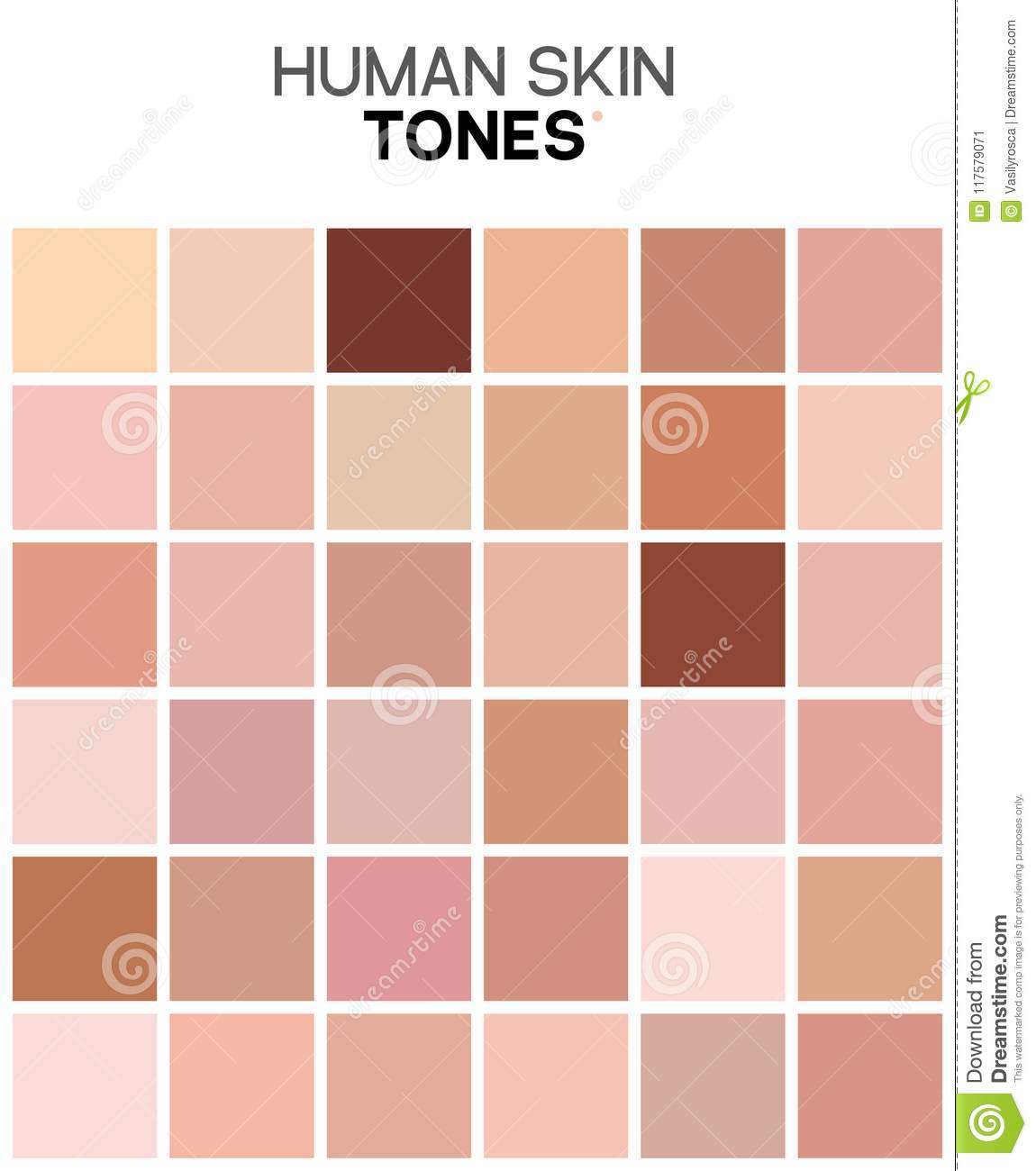 Skin Care Infographic: Skin Tone Color Chart. Human Skin Texture Color
