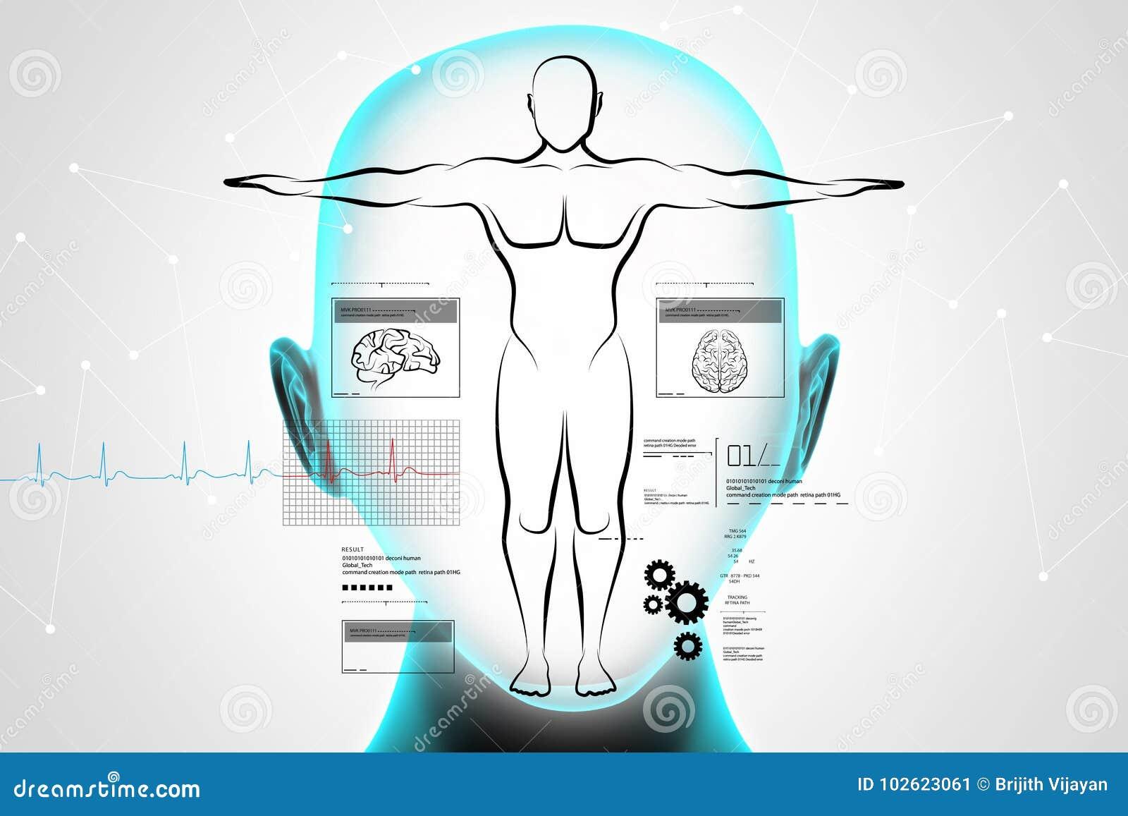 Skizze Des Menschlichen Körpers Stock Abbildung - Illustration von ...