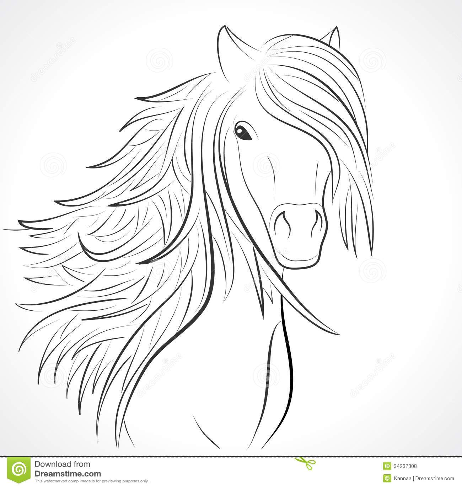 Skizze Des Pferdekopfs Mit Der M 228 Hne Auf Wei 223 Vektor