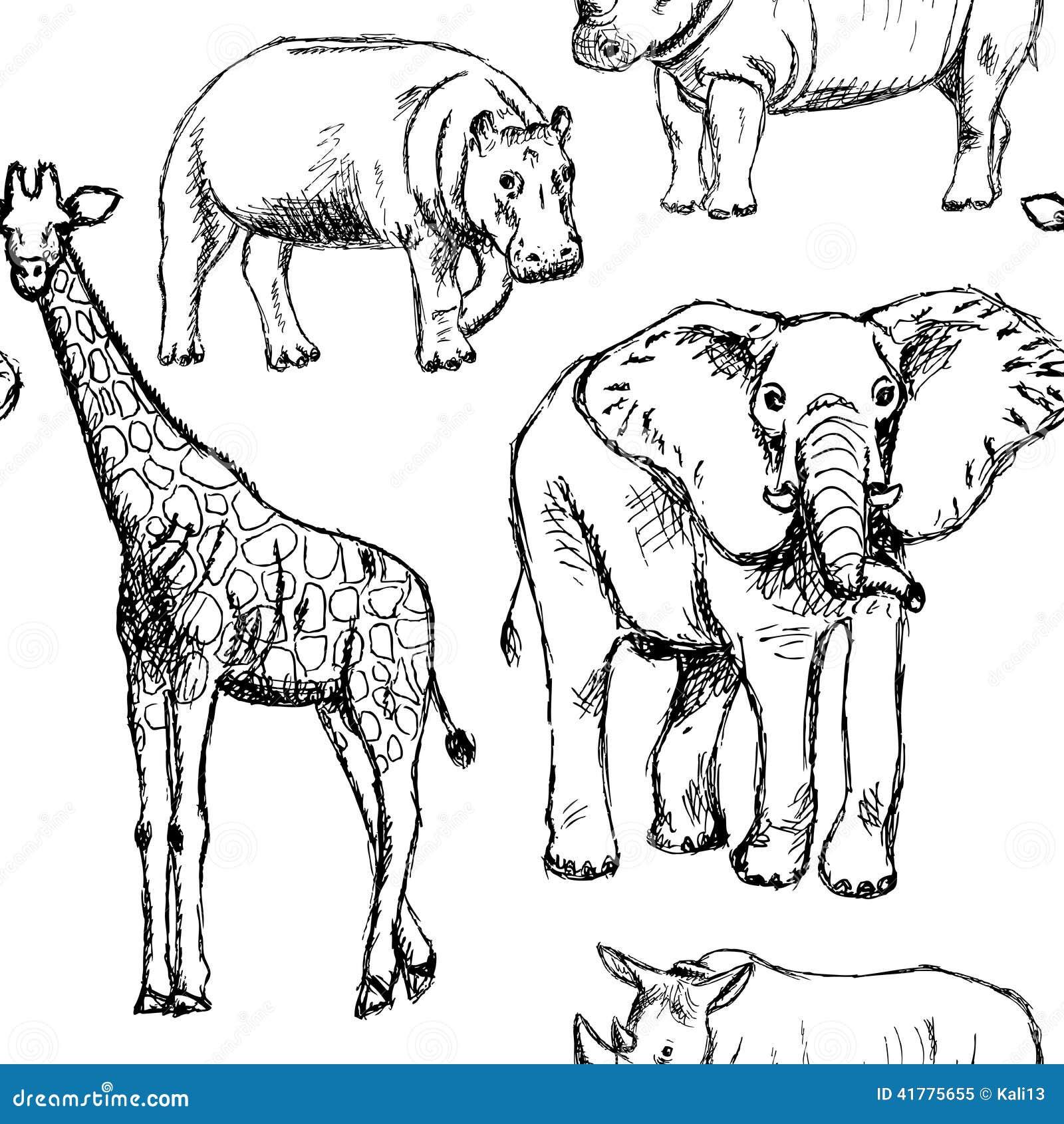 skizzieren sie elefanten nashorn giraffe und flusspferd
