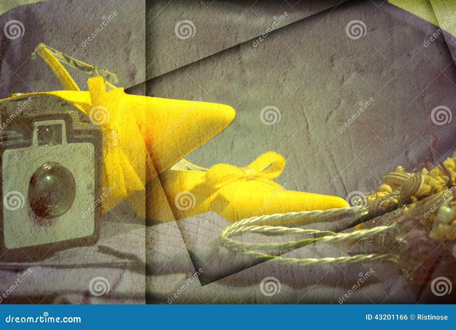 Download Sko- Och Tillbehörmodekvinna Arkivfoto - Bild av klassiskt, handväska: 43201166