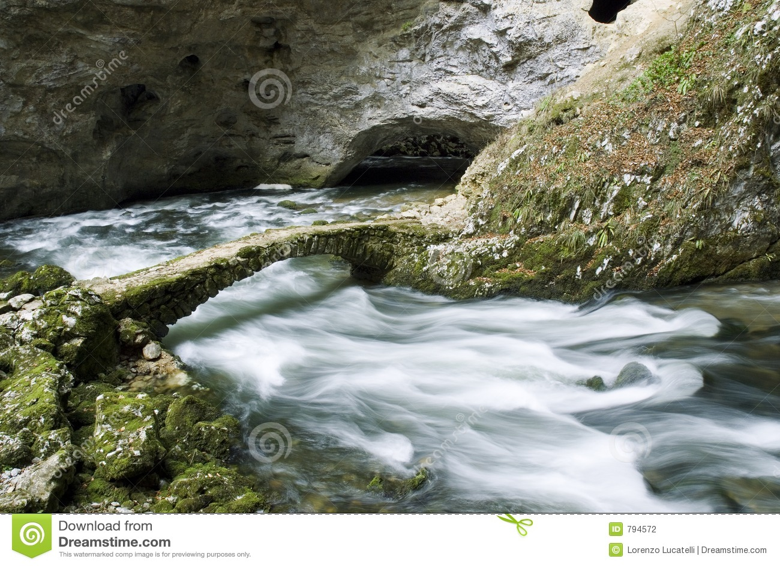 Skocian rakovflod