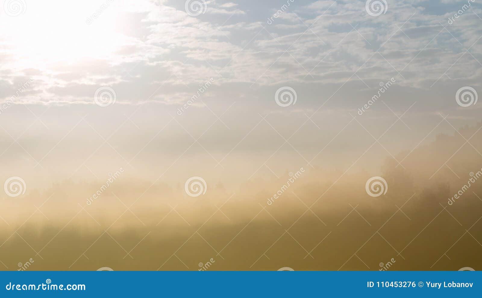 Skogkontur som kikar till och med tung dimma