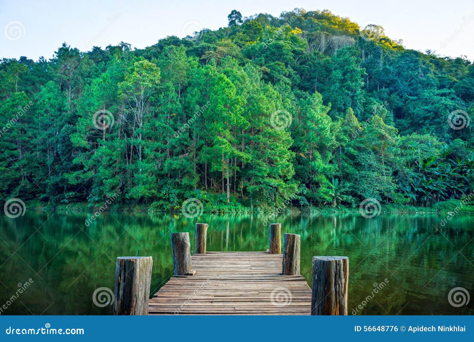 Skogplats och träpir i den naturliga Huai Makhuea Som sjön