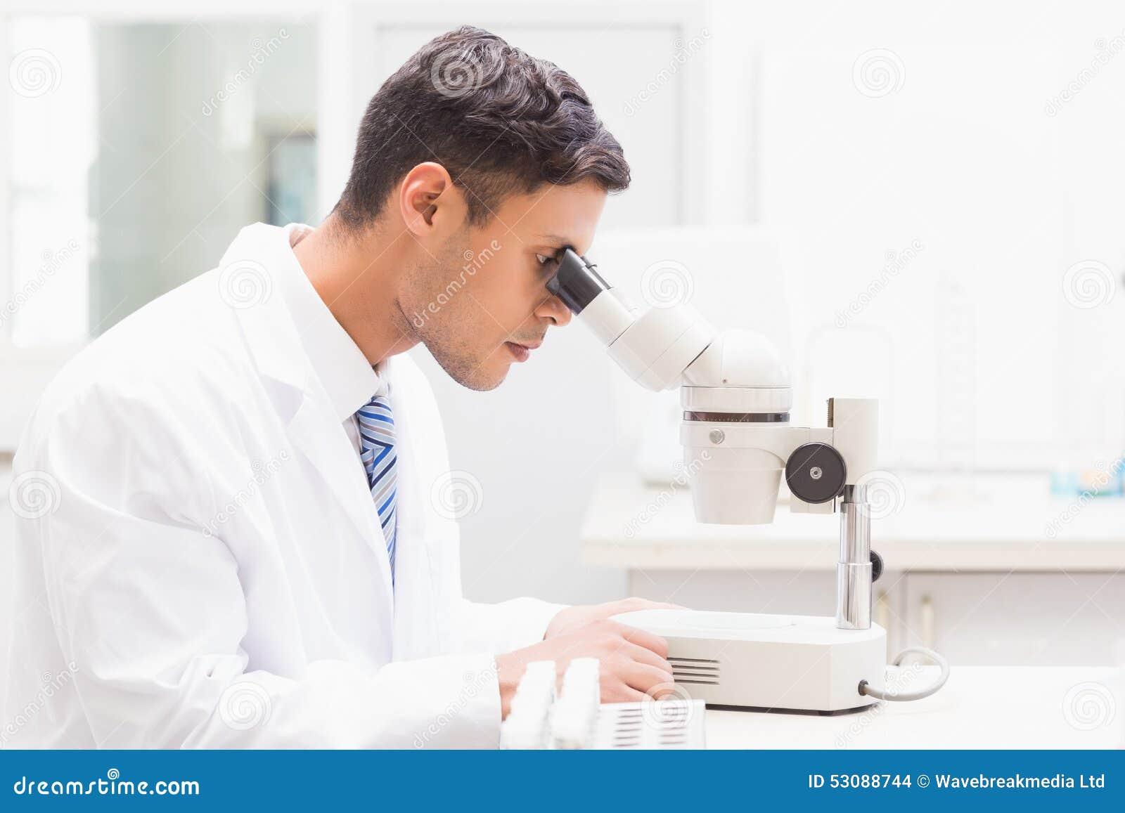 Skoncentrowany naukowiec obserwuje Petri naczynie z mikroskopem