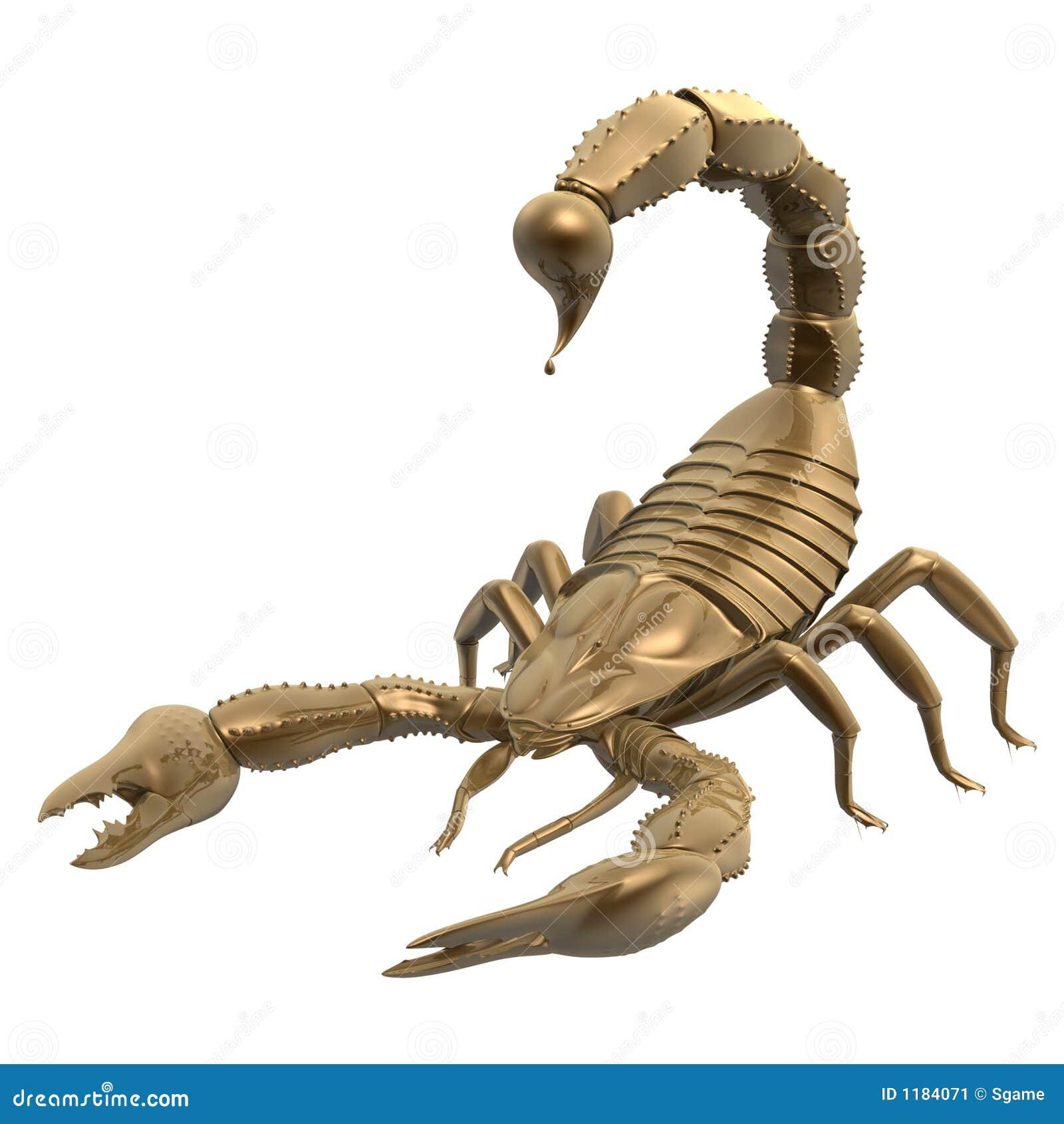 skorpion stock abbildung bild von n chtlich insekt. Black Bedroom Furniture Sets. Home Design Ideas