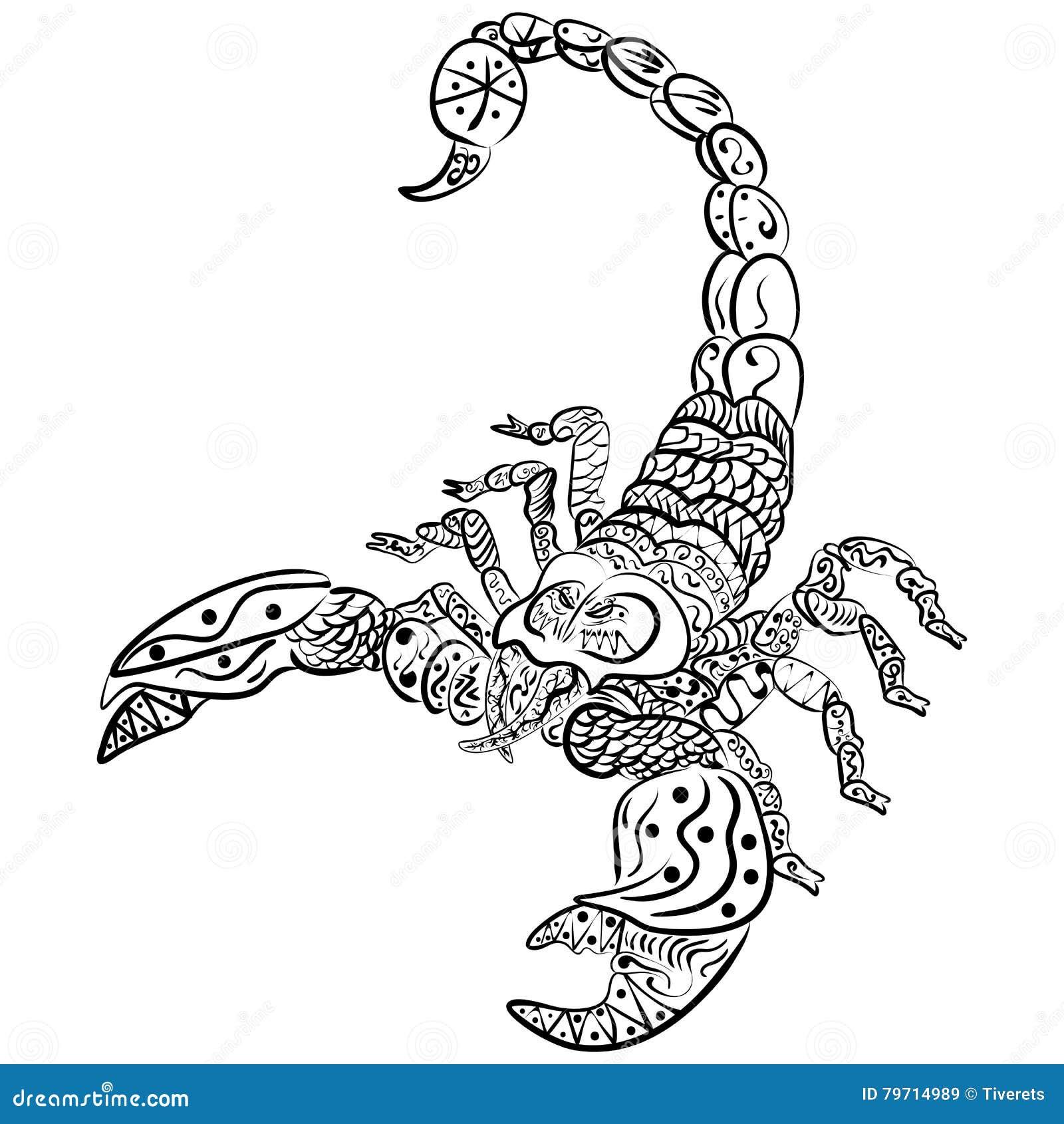 Skorpion Zentangle Stilisierte Vector Illustration Freihändiger