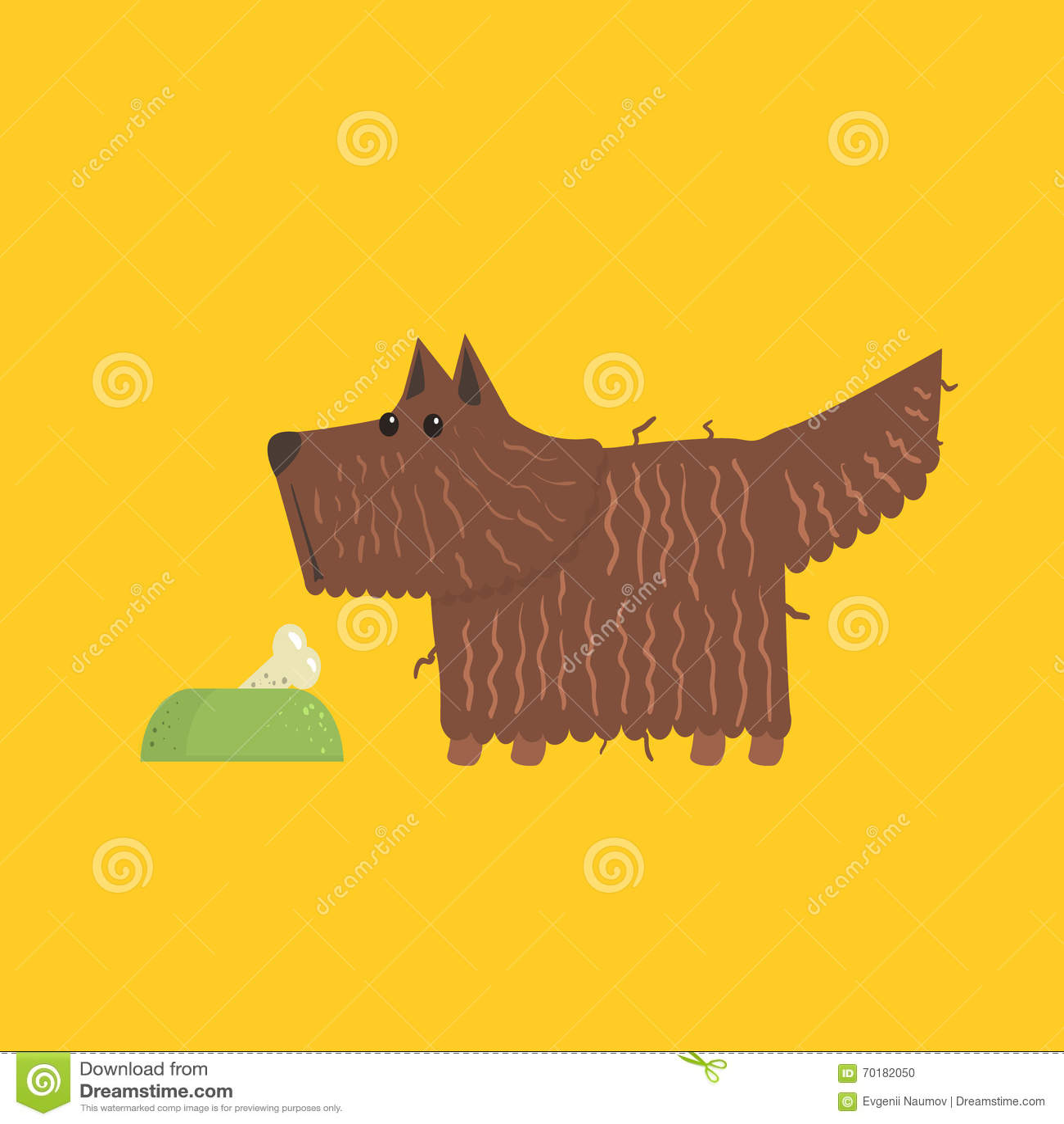 Skotte Terrier med matskålbild