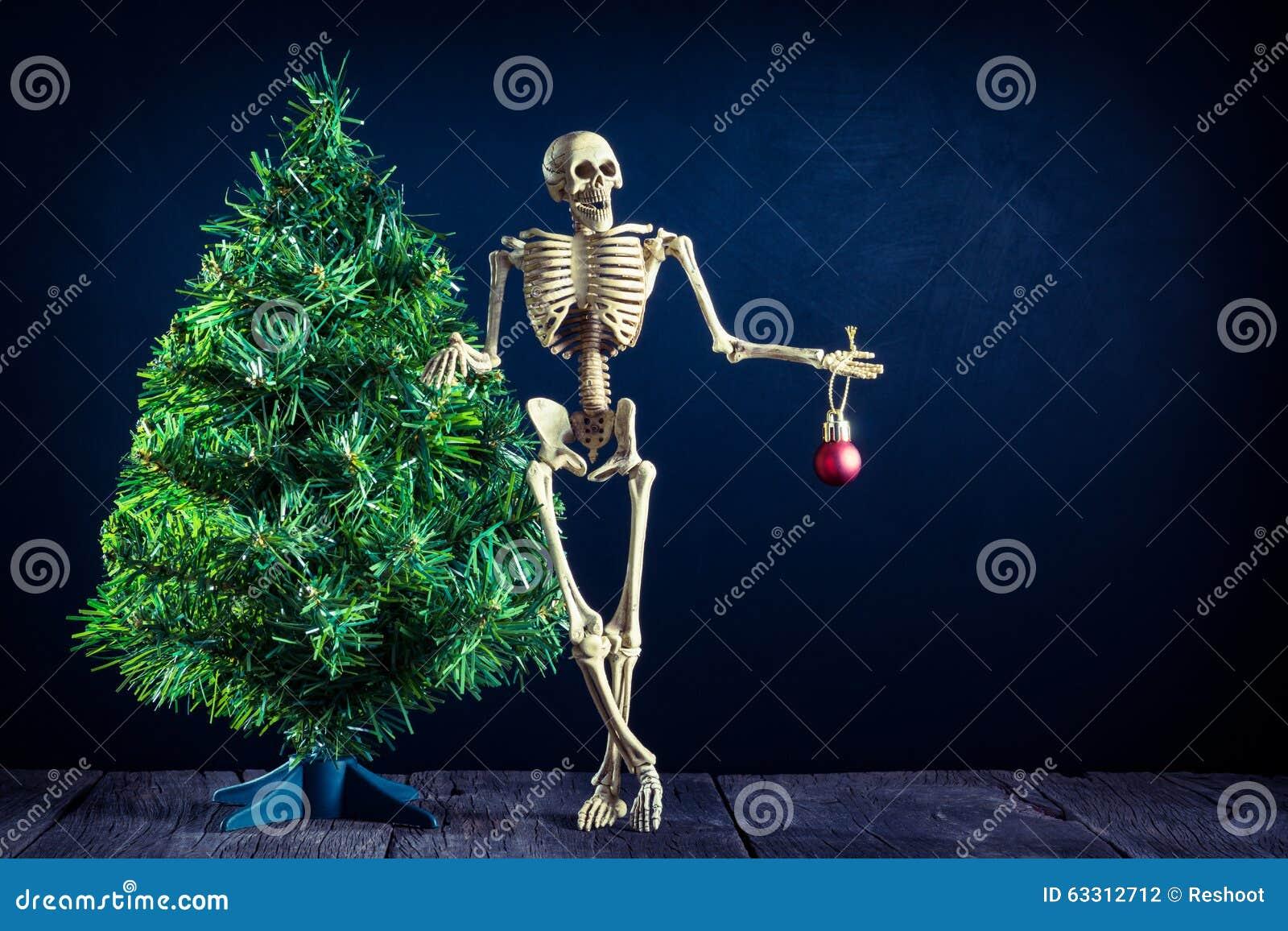 Skull and christmas tree stock photo image of evergreen