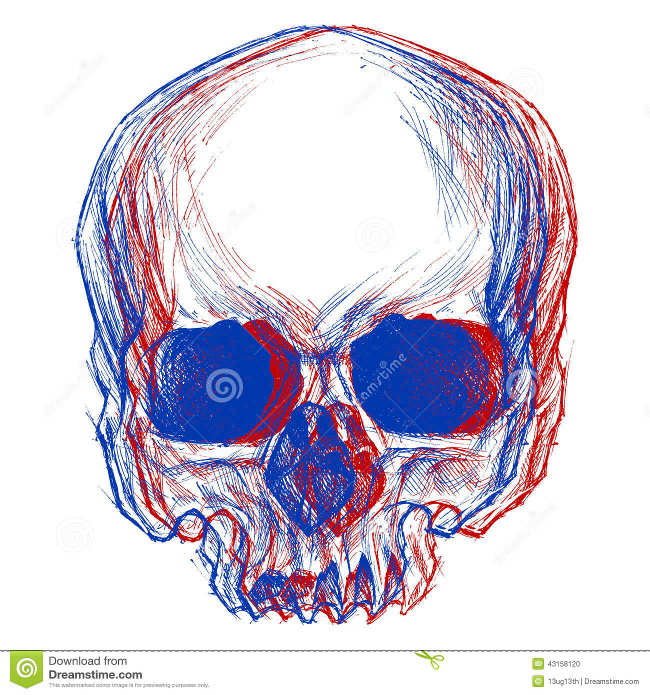 Drawing Lines Using Svg : Skull d stock vector image of hospital beast line