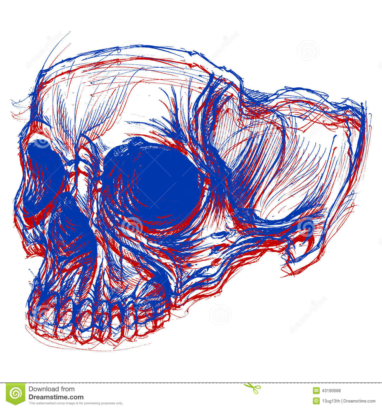 Drawing Lines Using Svg : Skull d stock vector image