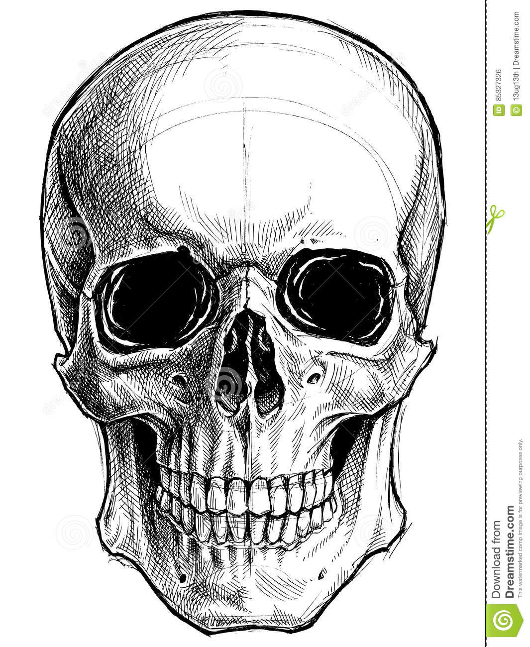 Line Drawing Skull : Skull line work pictures to pin on pinterest daddy