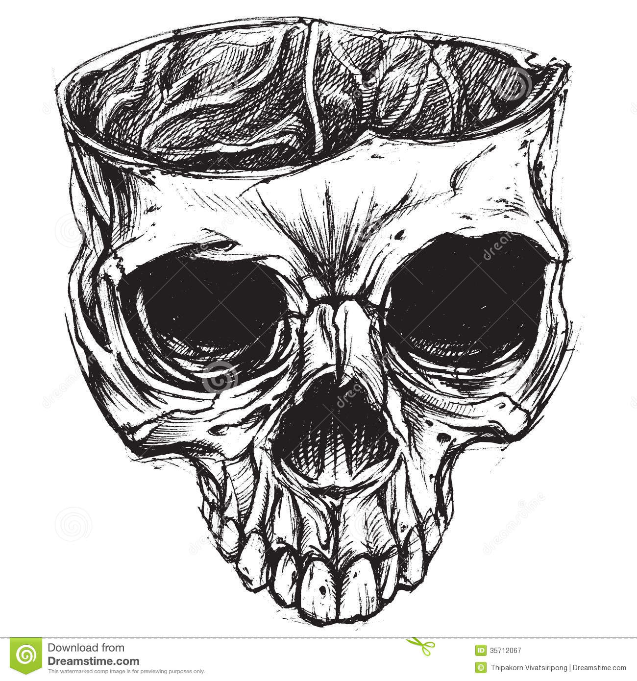 Skull drawing 02 stock vector illustration of ghost for Free online drawing