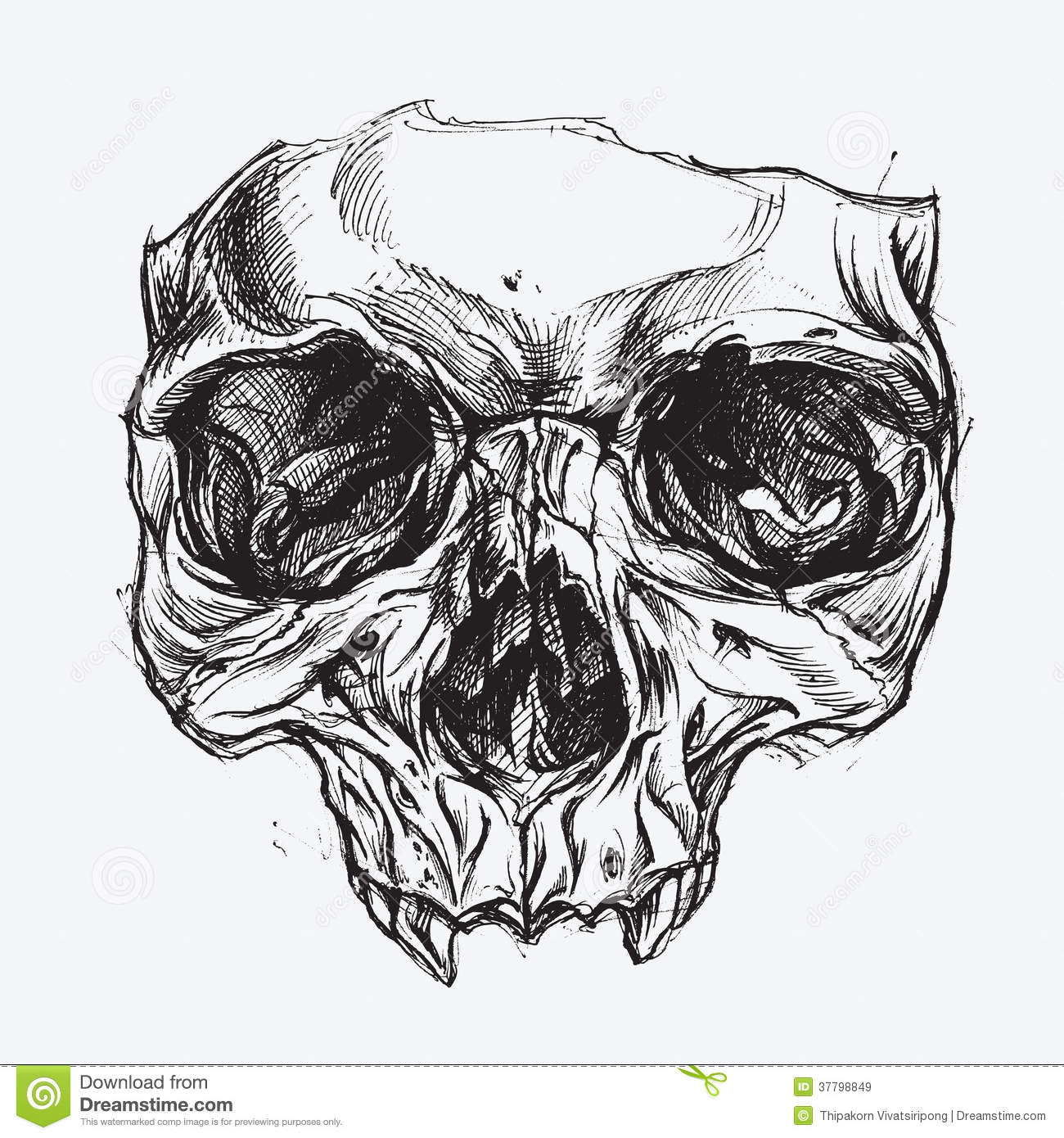 Skull Drawing Royalty Free Stock Images Image 37798849