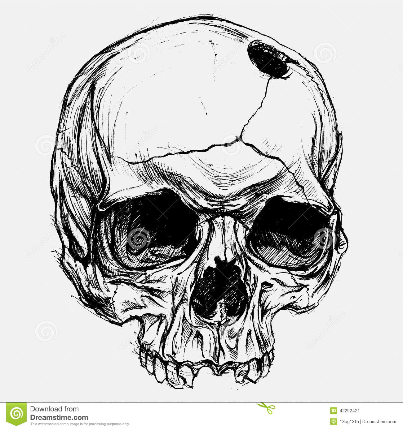 Line Art Skull : Skull stock vector illustration of dead curve design