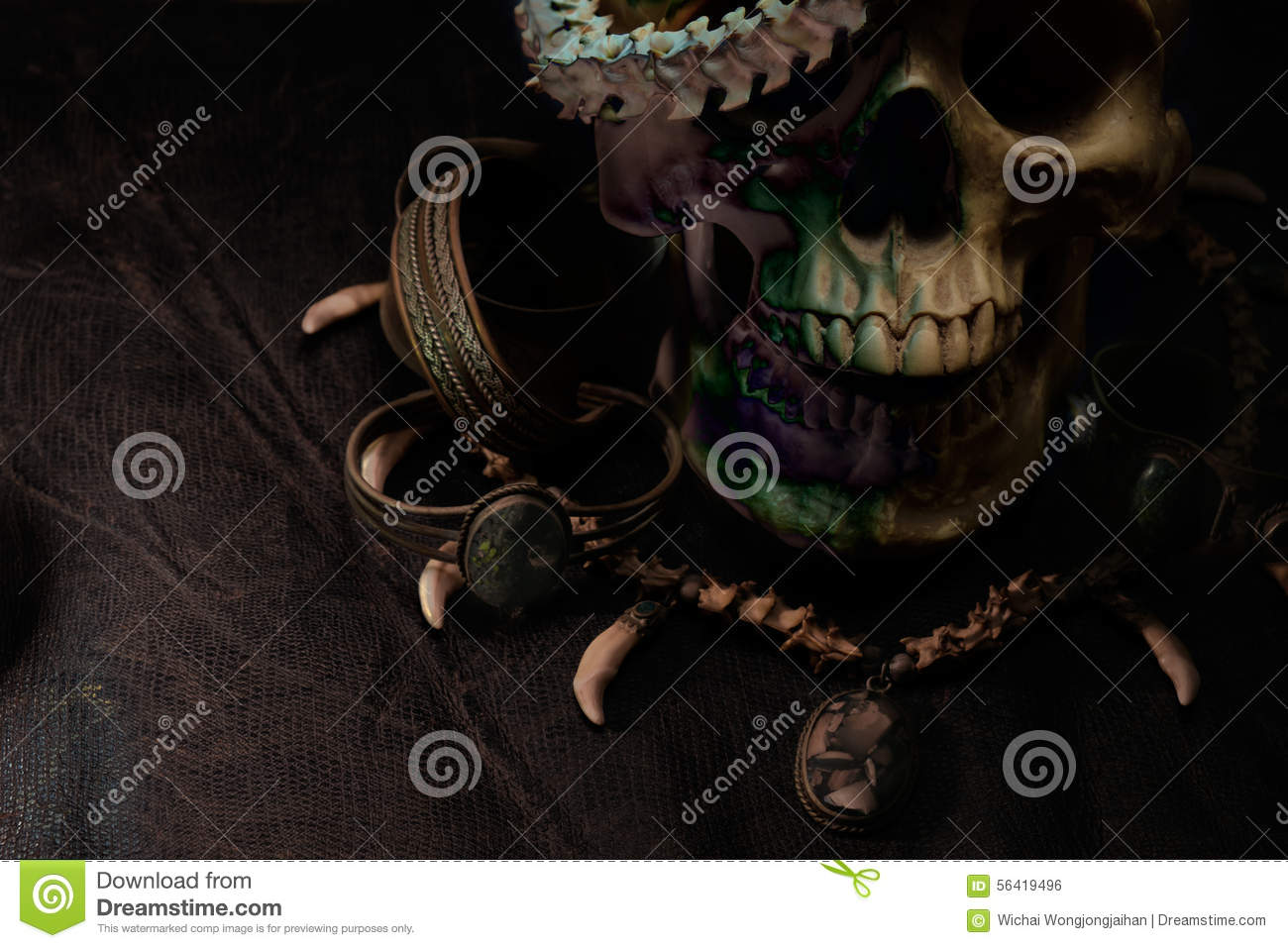 Skull Stock Photo Image Of Ambiance Crime Death Horror 56419496 Snake Skeleton Diagram The At Very
