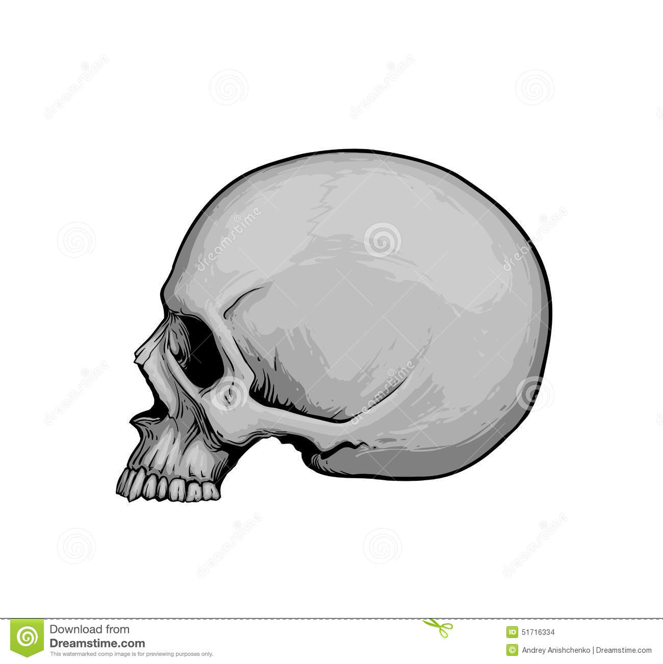 It is a graphic of Clever Skull Profile Drawing