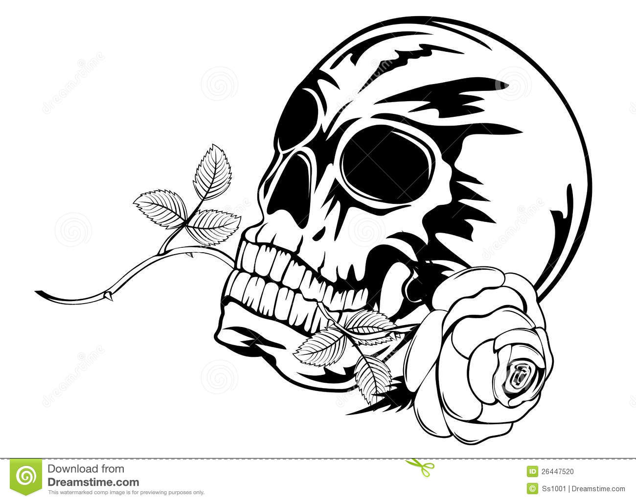 Skull With Rose Stock Photo Image 26447520