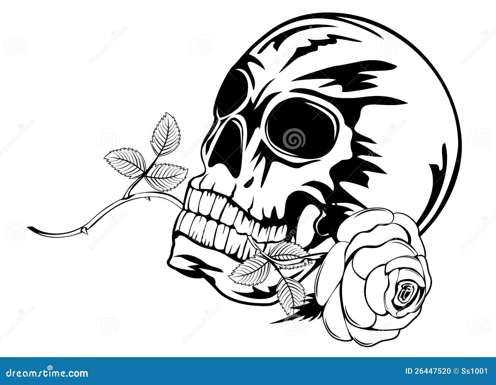 Skull moreover Stock Photo Skull Rose Image26447520 moreover Black And White Corner Floral Rose Vine Border Design Element 1356884 moreover Stock Illustration Portrait Cow Vector Drawing Head Image45654323 as well Stock Illustration Owl Isolated Objects White Background Vector Illustration Eps Image44564598. on vintage anatomy illustration
