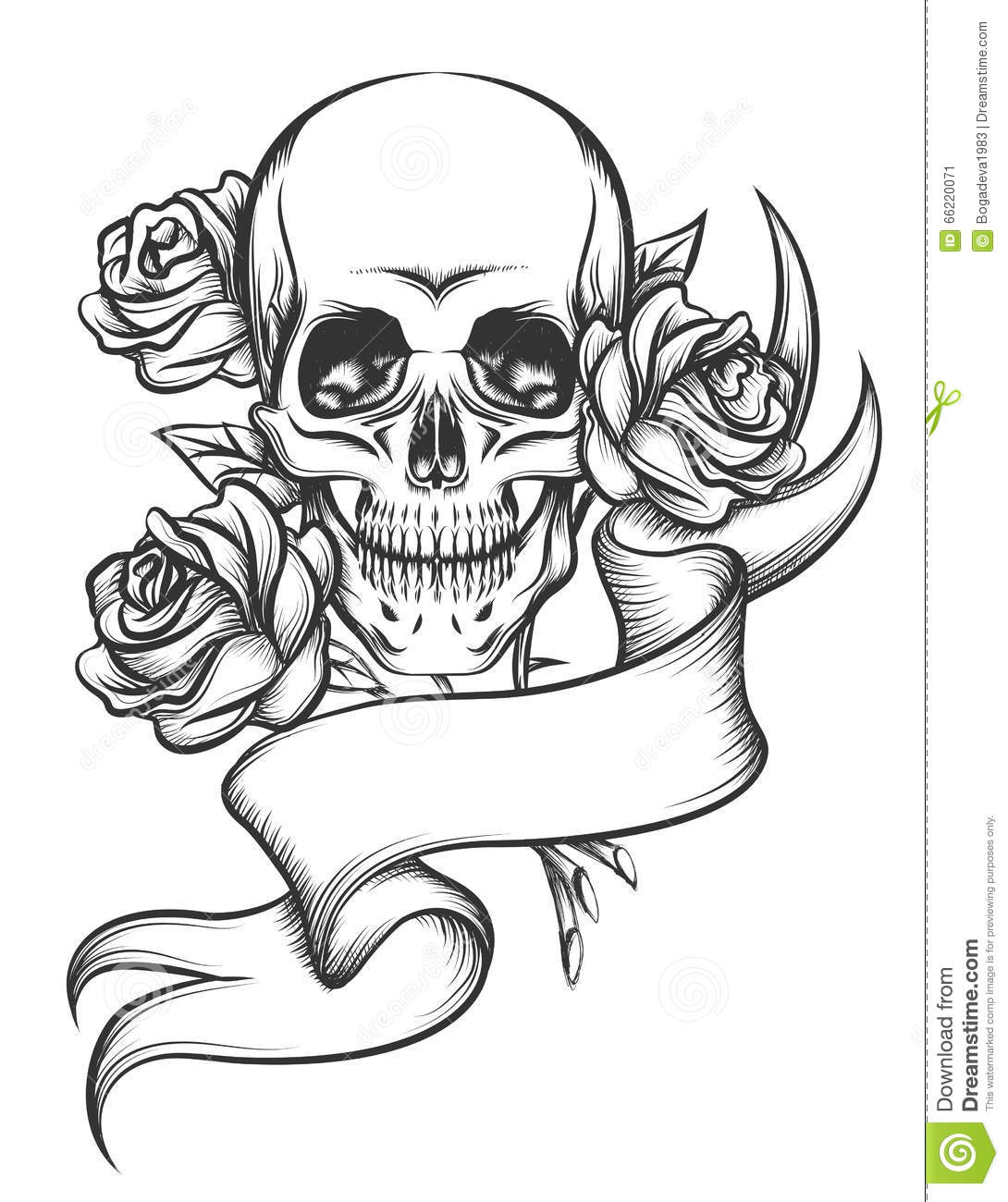 Skull And Roses With Ribbon Stock Vector Illustration Of Body