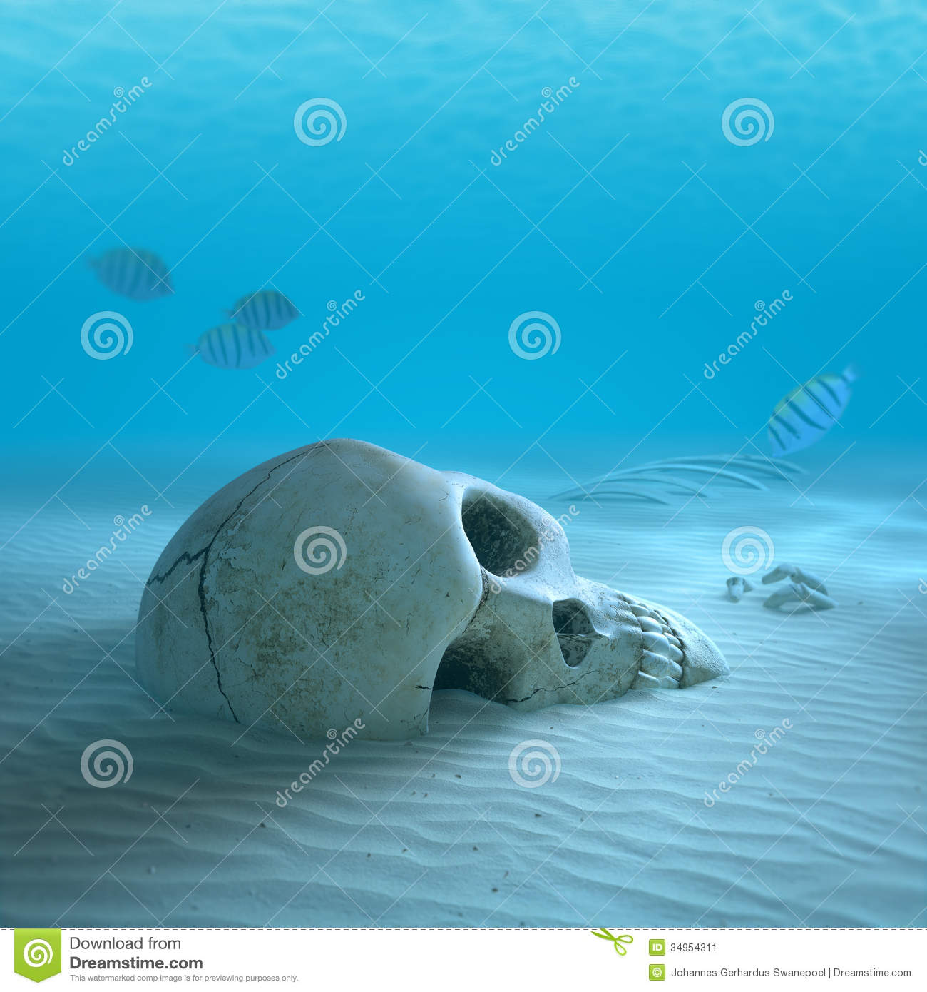 Skull On Sandy Ocean Bottom With Small Fish Cleaning Some