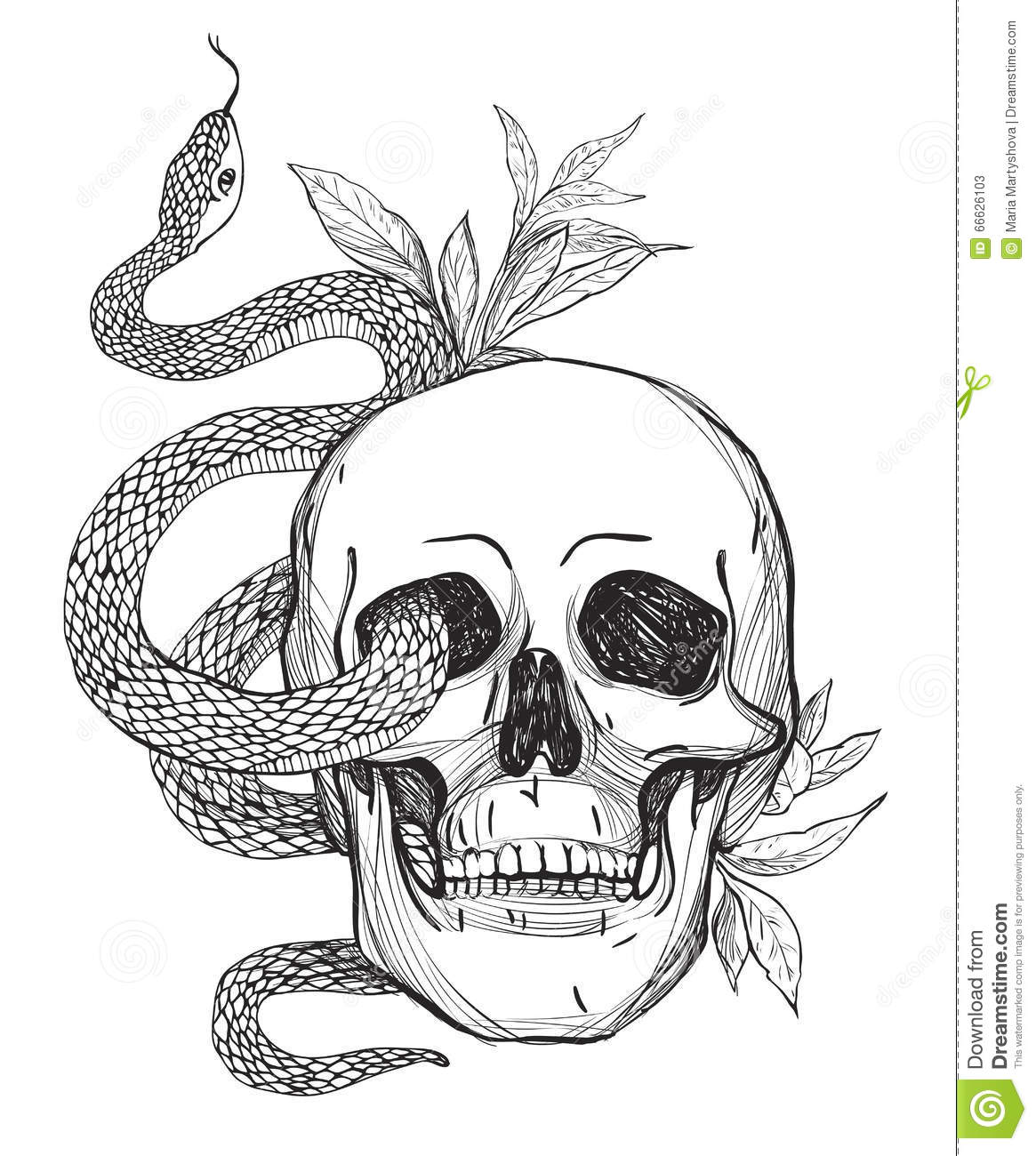 Skull And Snake Vintage Vector Illustration Stock