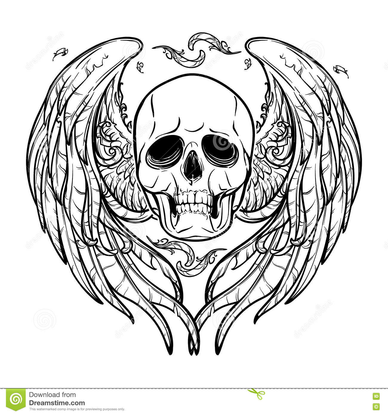 Skull With Wings Black And White Stock Vector Illustration Of
