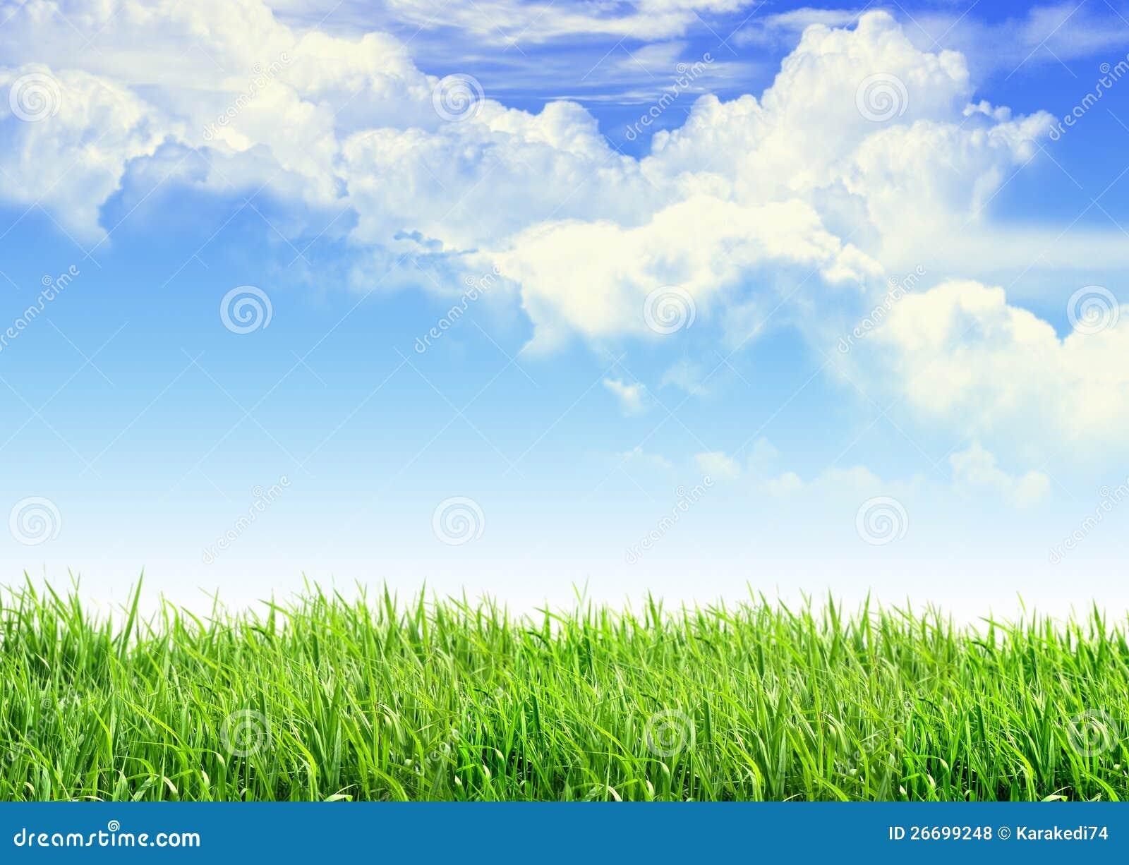Grass Stock Photos Download 3086605 Images
