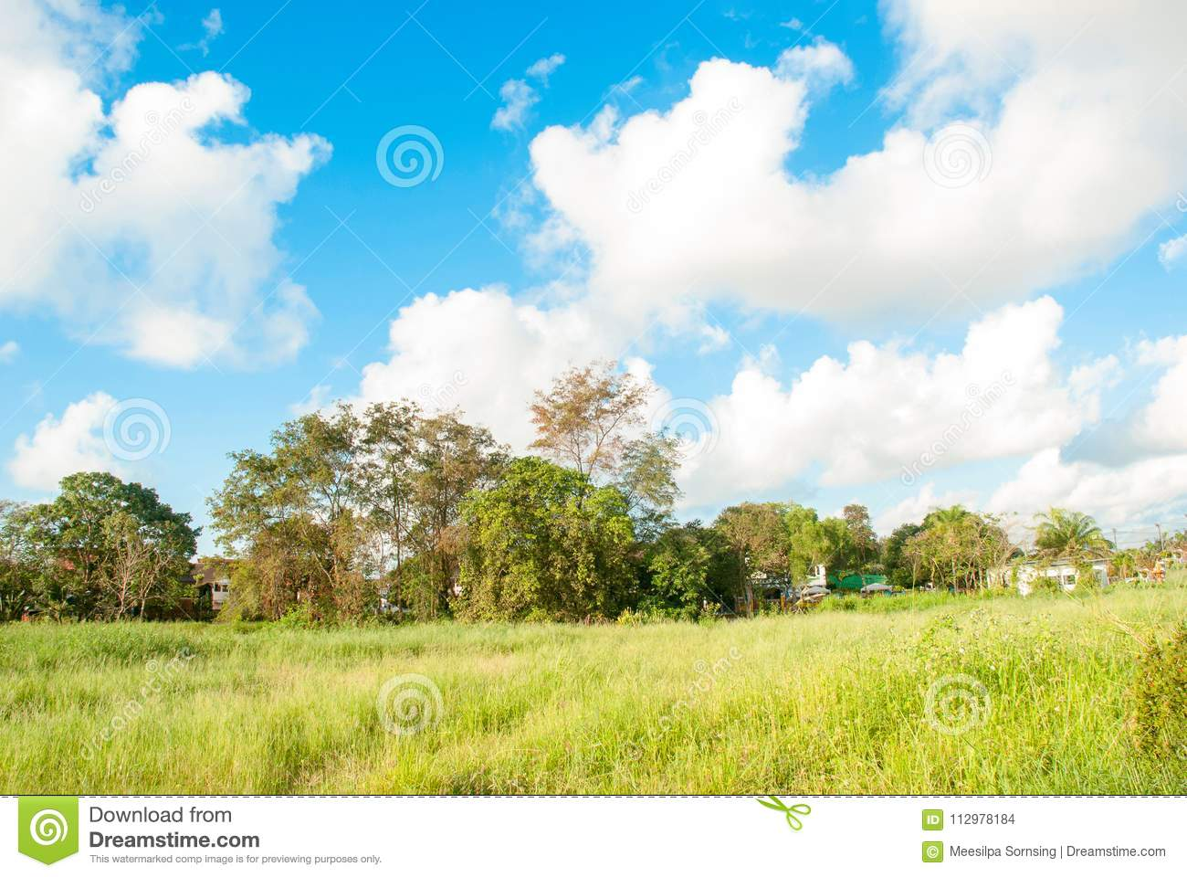 Blue sky and white cloud white background