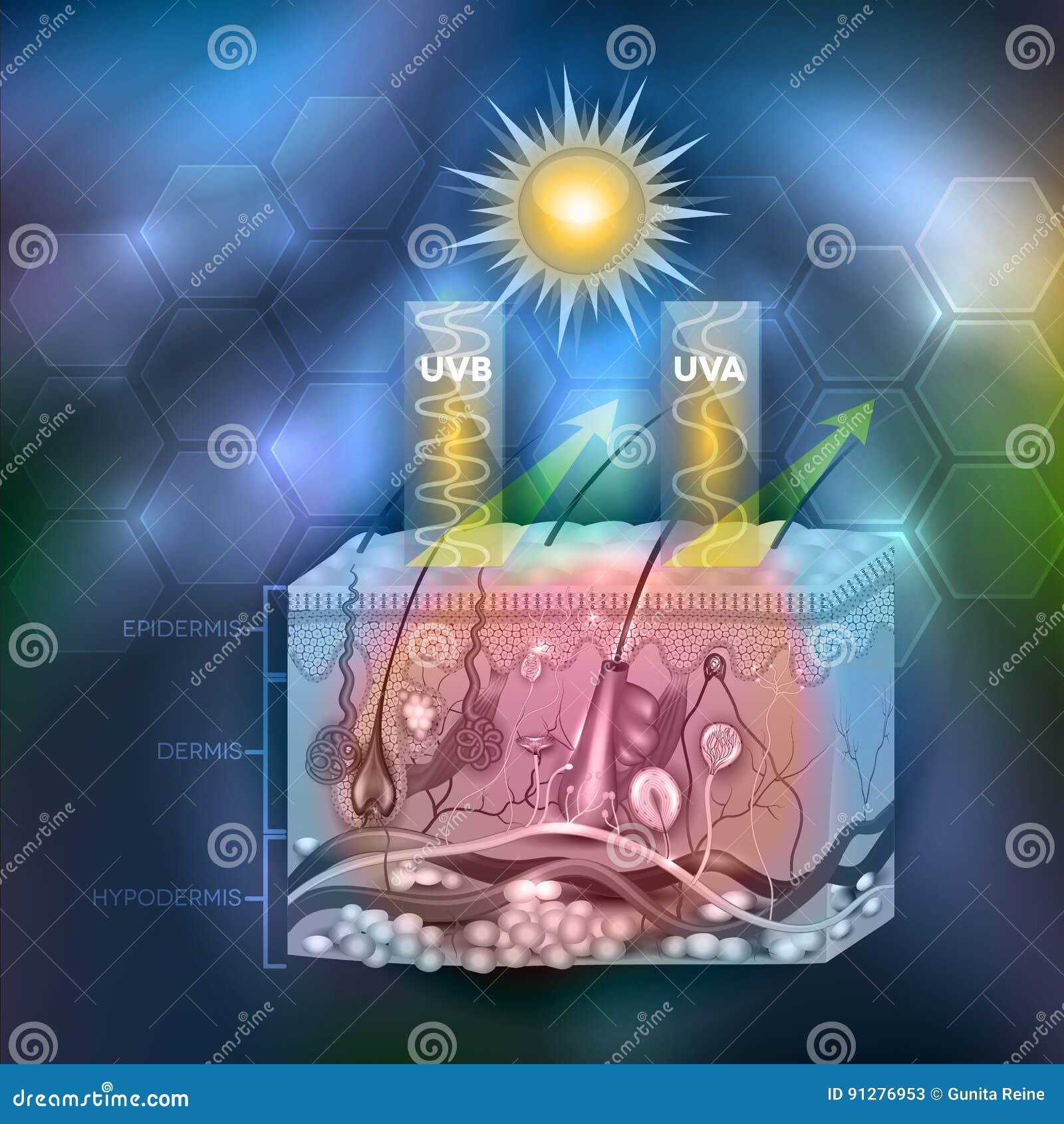Skyddad hud med sunscreenlotion