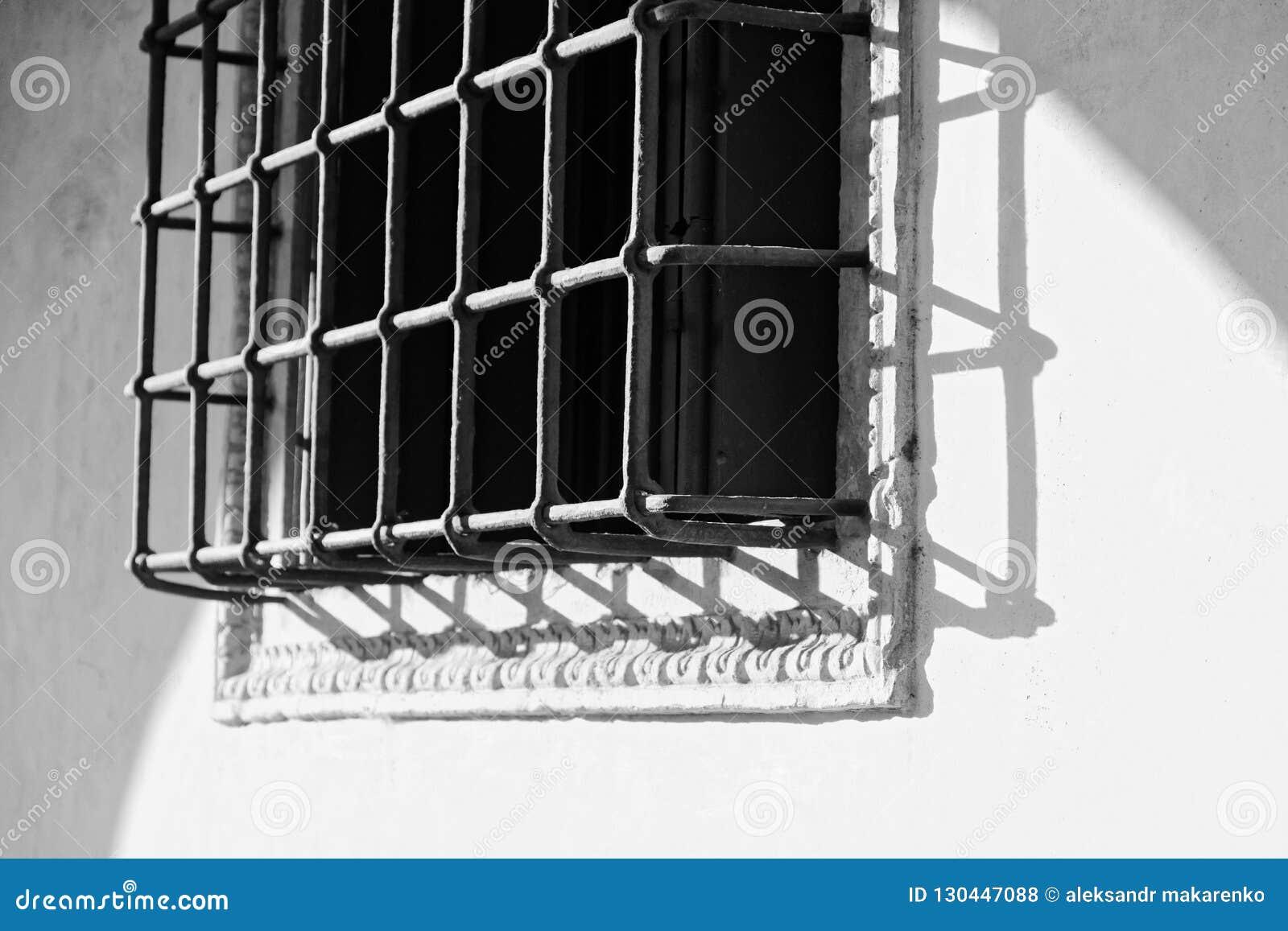 Skyddande skyddsgaller för härlig metall på fönstret
