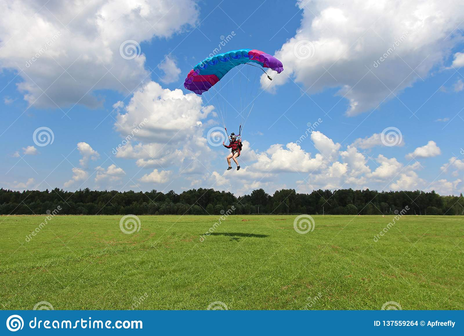 Skydiving Dziewczyna ląduje na zielonym polu