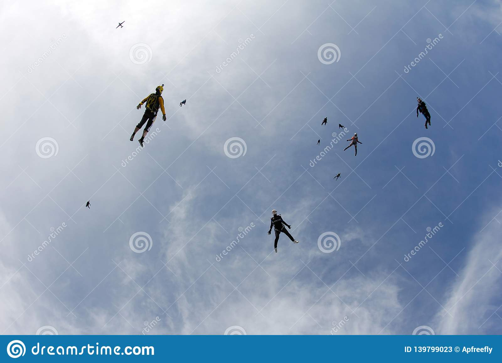 Skydiving. A flock of skydivers is in the blue sky.