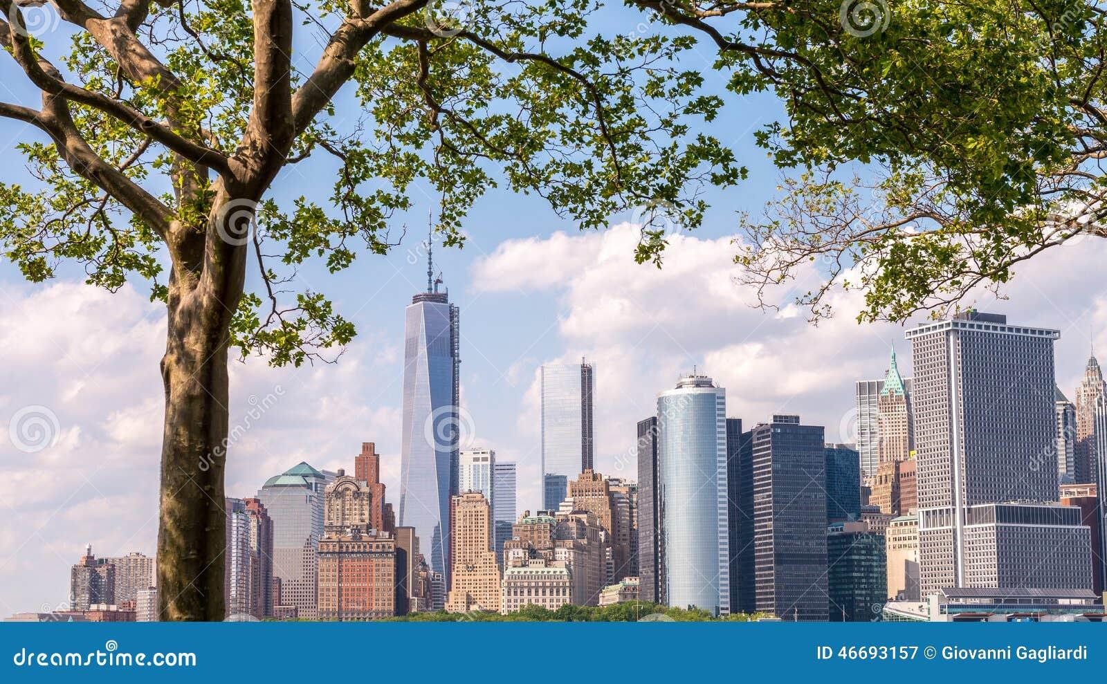 Skyline bonita do lower manhattan quadro pela ilha dos reguladores