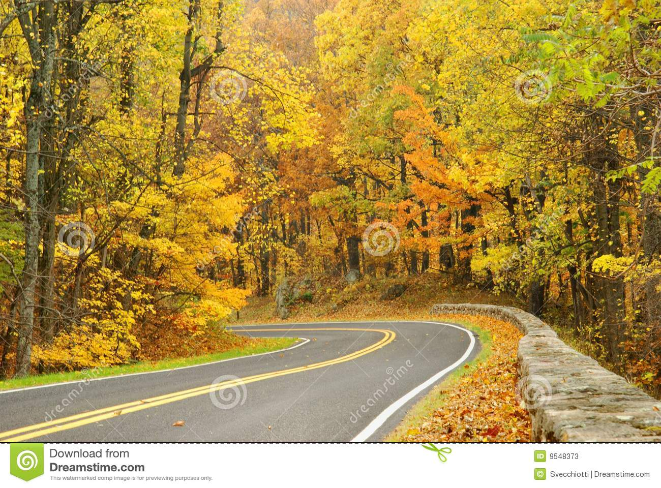 Skyline Drive In Autumn Stock Image Image Of Orange