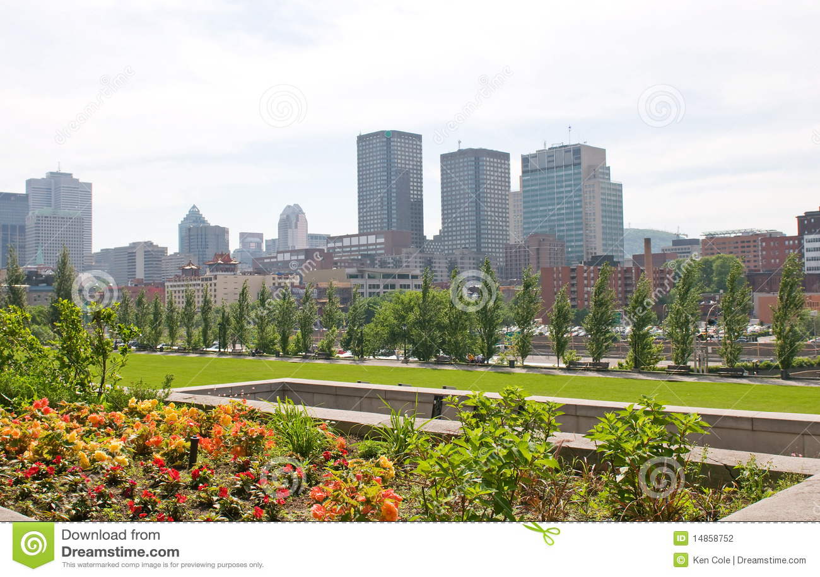 Skyline Montreal Quebec Canada