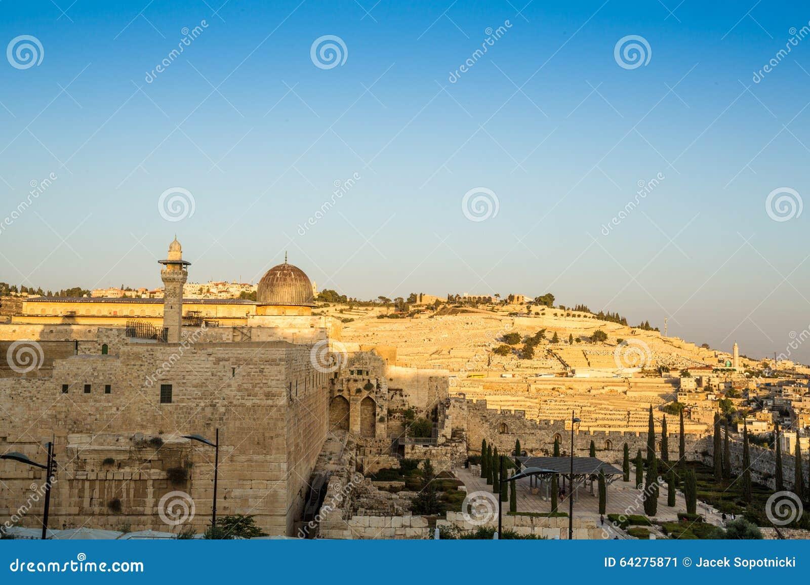 Селком израиль
