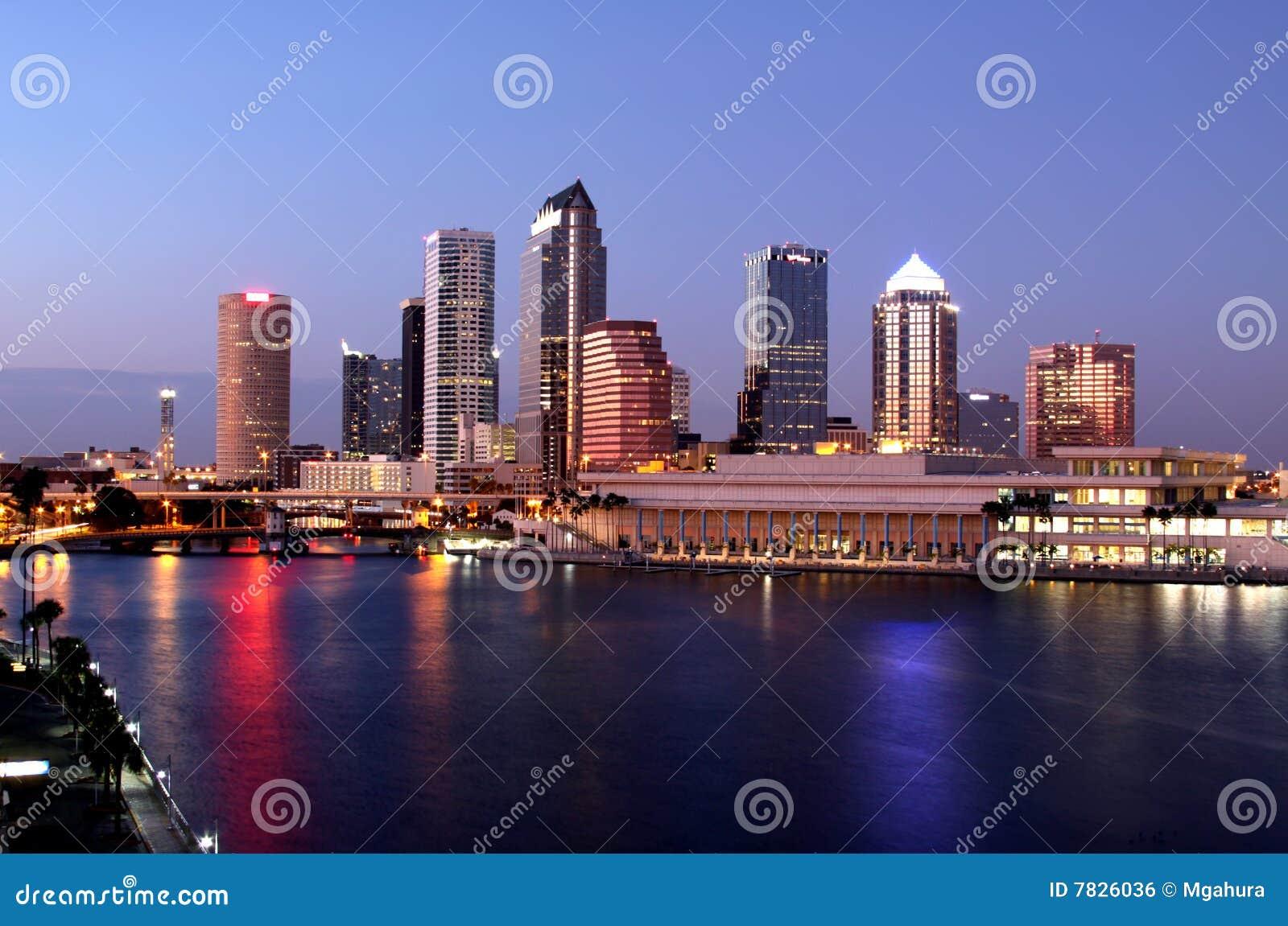 Skyscrapes panoramatic modernes Tampa d horizon
