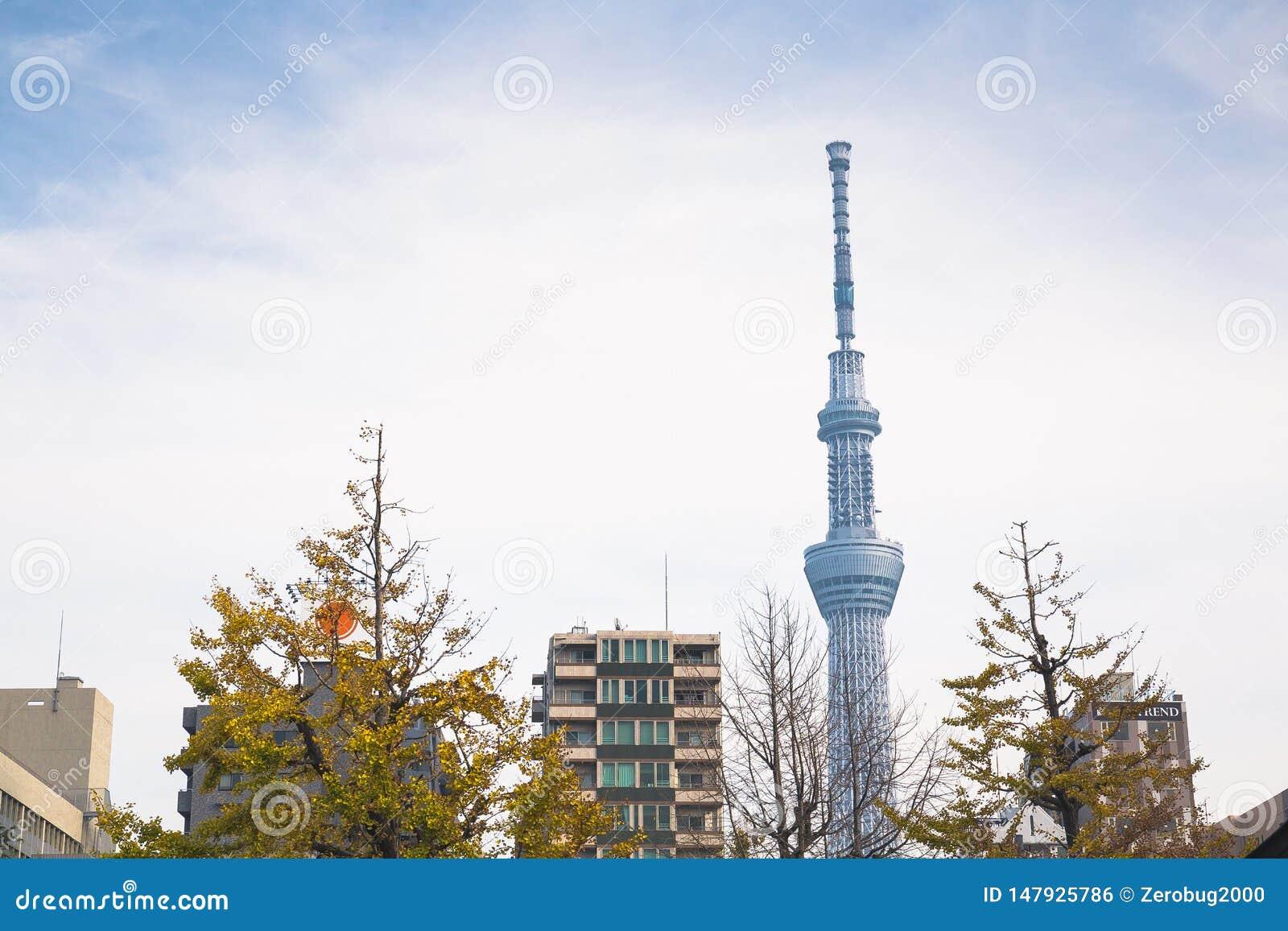 Skytree de Tokio