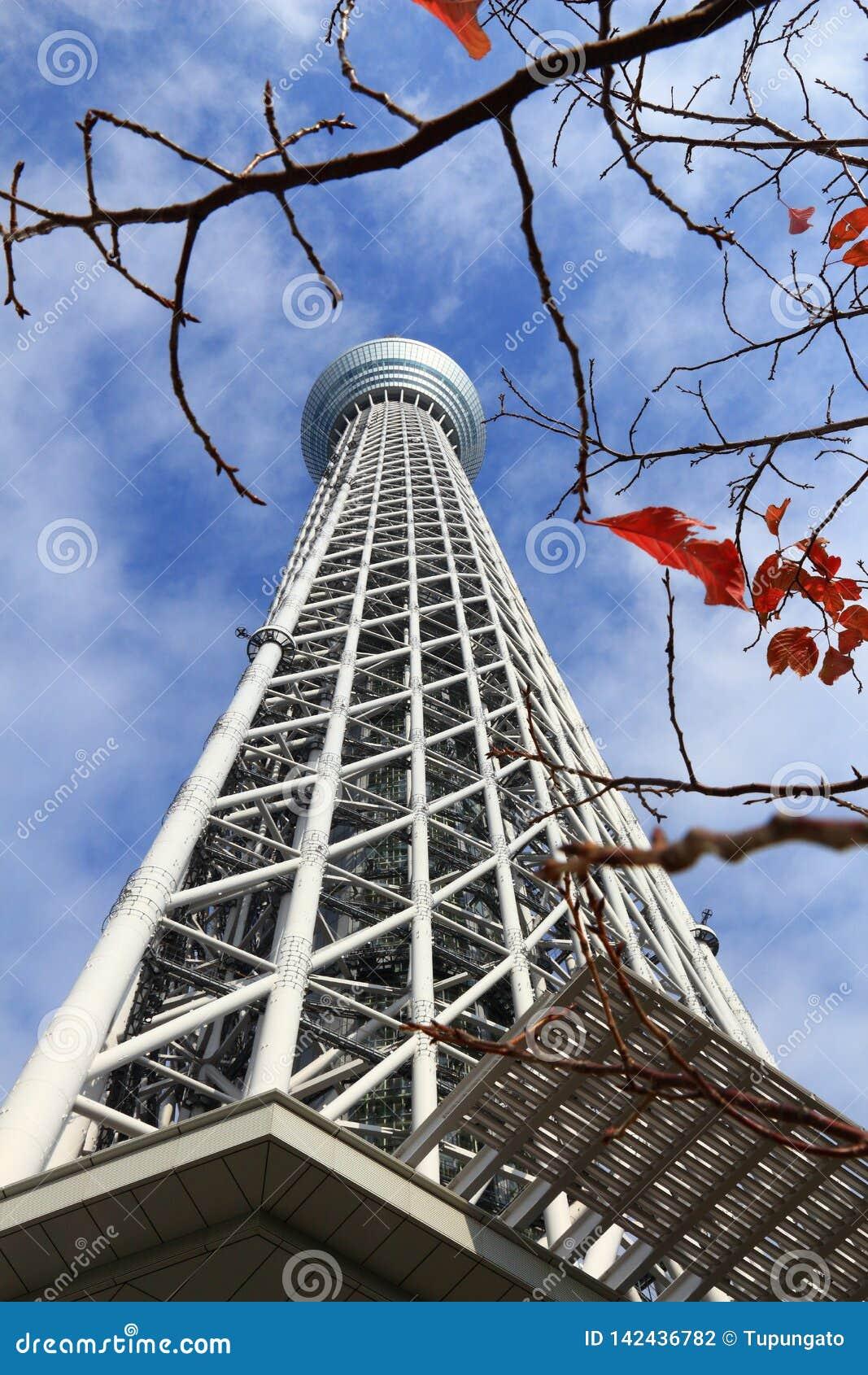 Skytree en Tokio, Japón