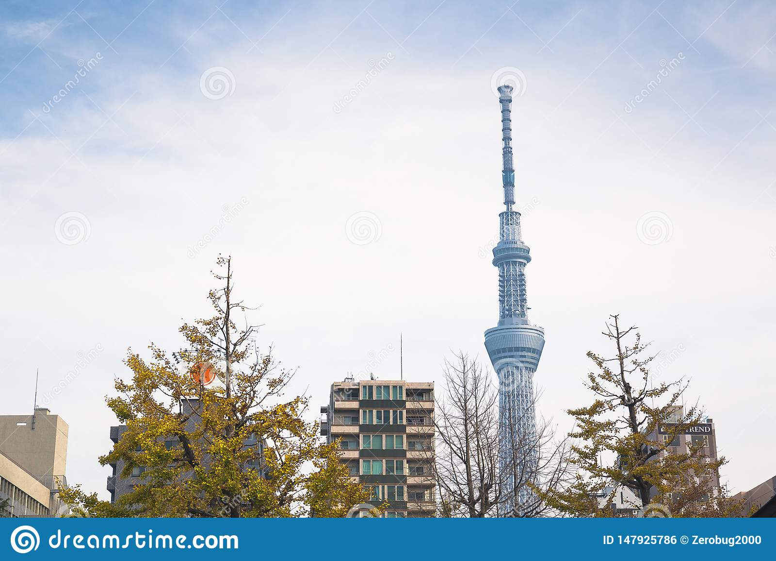 Skytree van Tokyo