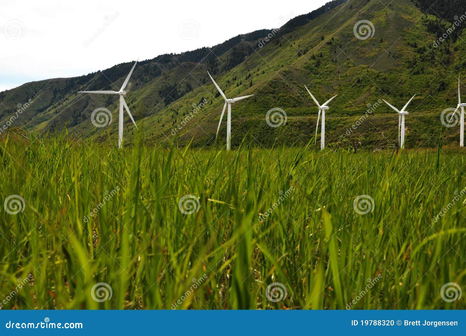 Slående gräswindmills