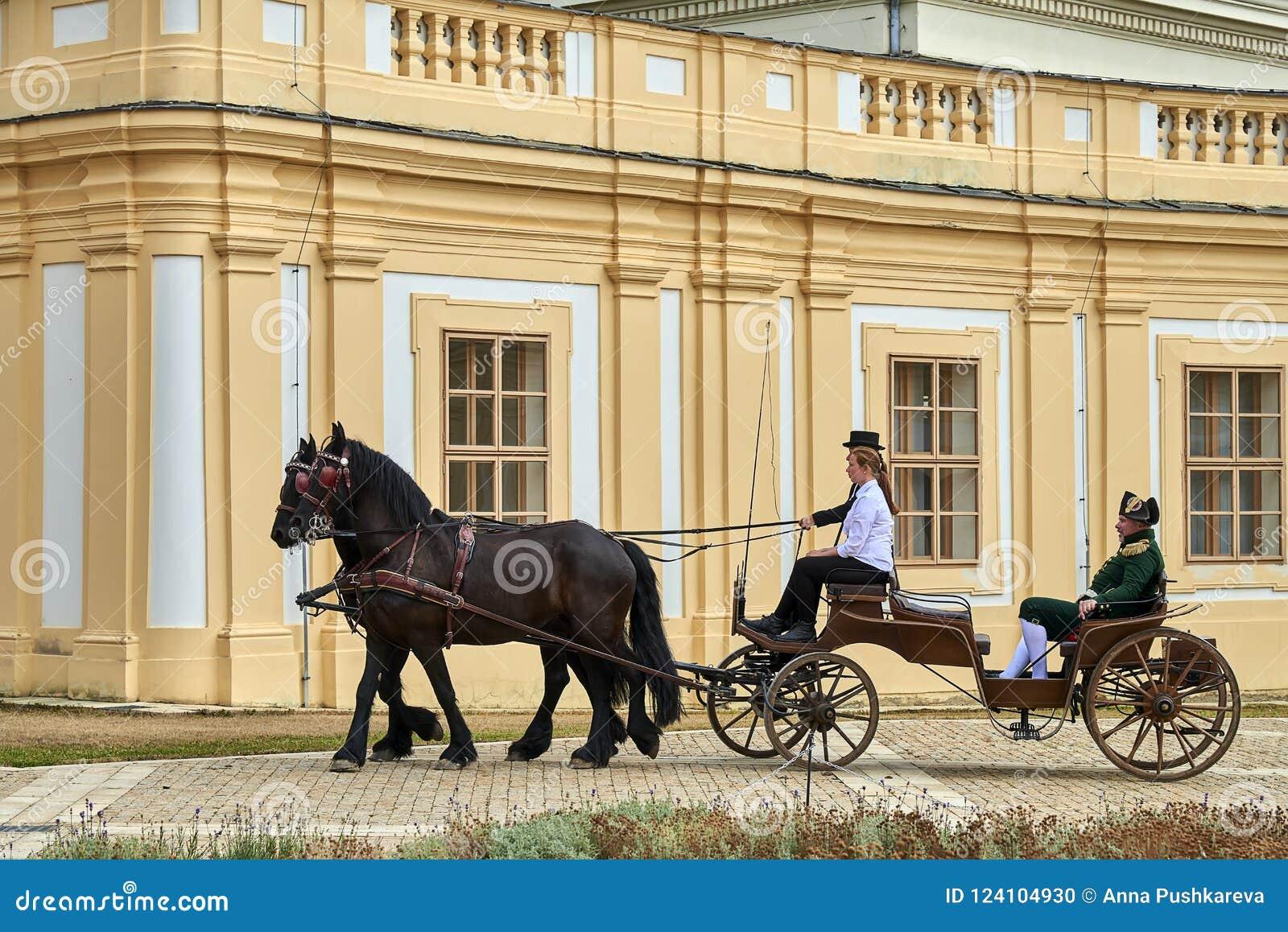 Riding ladies napoleon Latin Riding