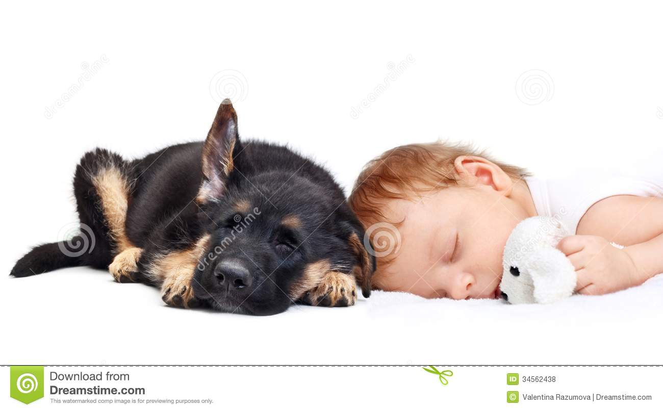 Sleeping Baby Boy And Puppy. Royalty Free Stock Photos - Image ...