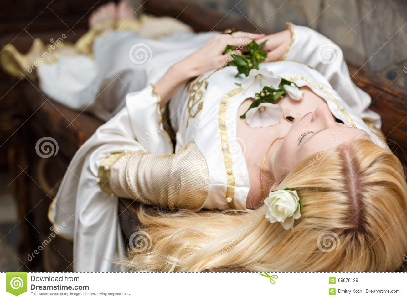 Image result for sleeping beauty stock