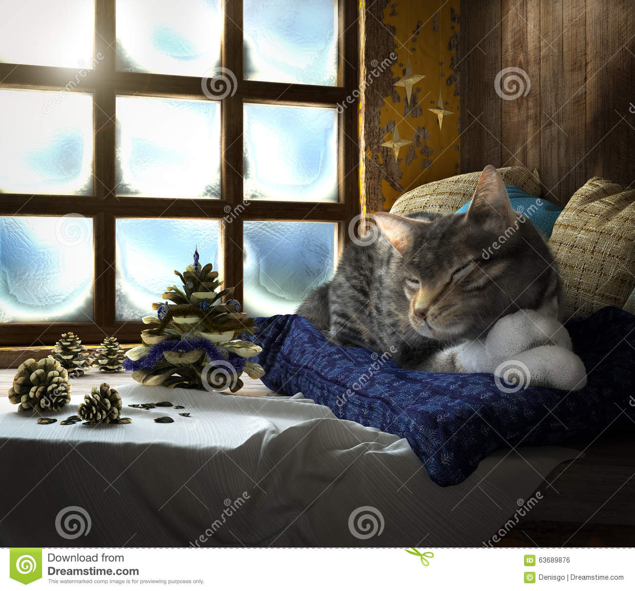 Sleeping cat on winter window background concept for Sleeping with window open in winter