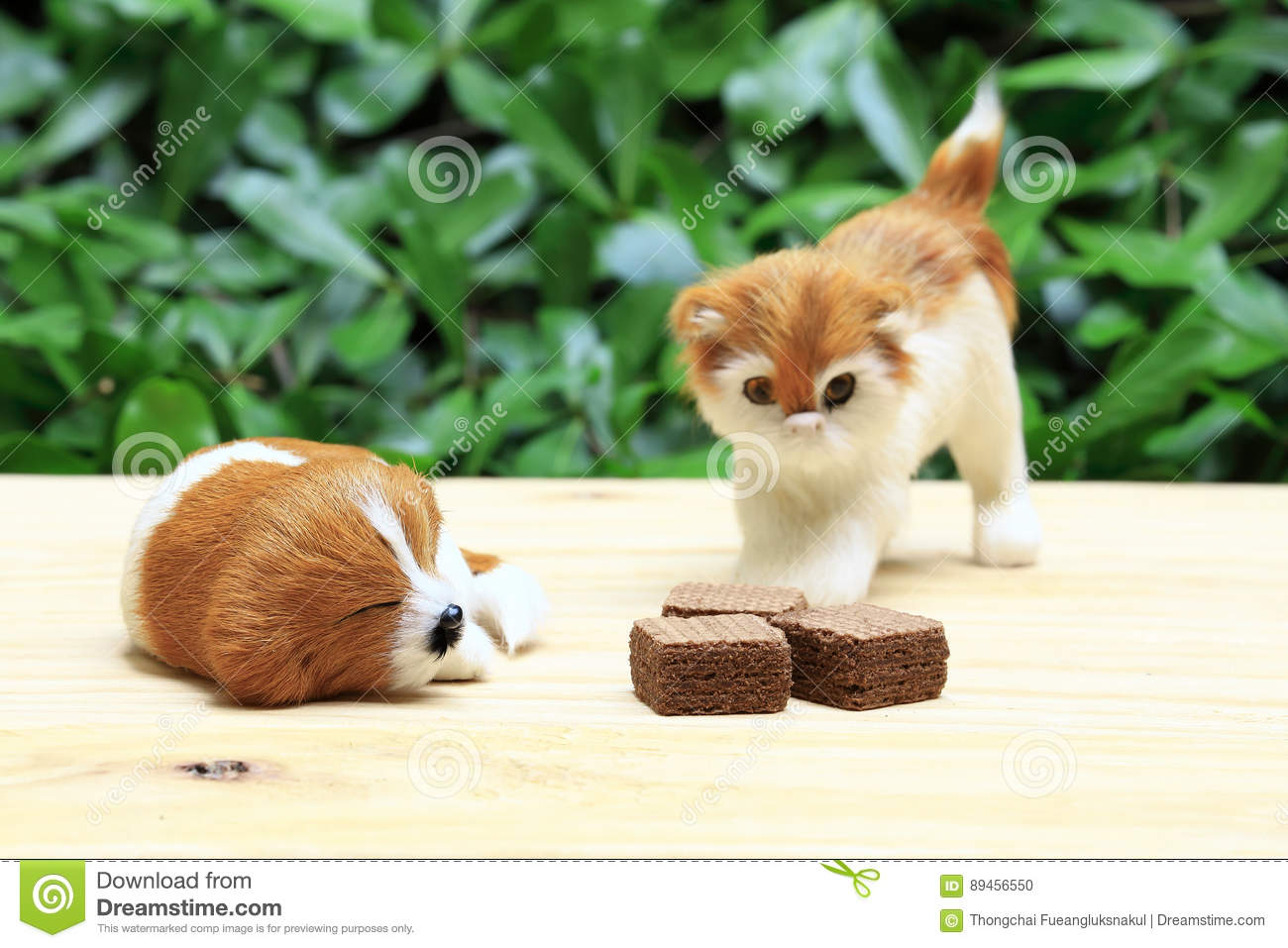 Sleeping dog and a cat look the wafer with chocolate cream.