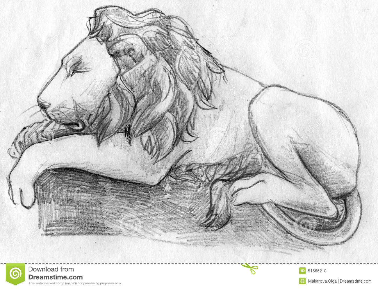 Hand drawn pencil sketch of a lion sleeping in the zoo
